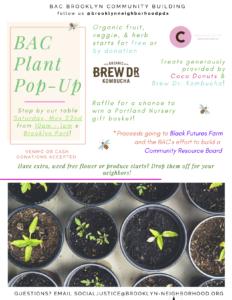 BAC Plant Pop Up 2021-05-22 flier (details in post)